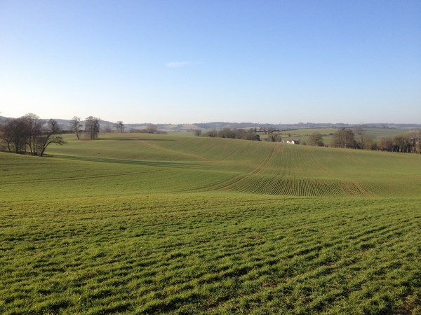 Countryside near Hitchin, Hertfordshire